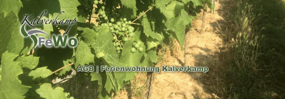 AGB Kalverkamp Ferienwohnung